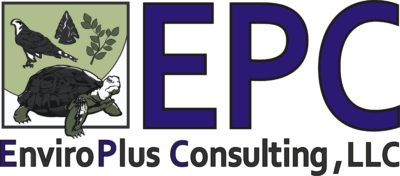 EnviroPlus Consulting | Projects